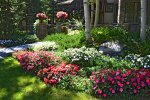 Annual Garden Beds